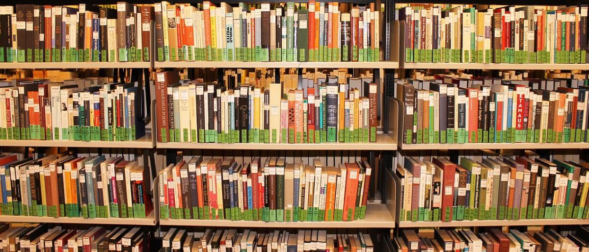 Permalink auf:Aus der Fraktion: Mehr Bücher für die Bücherei